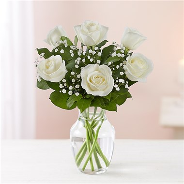 1 800 flowers loves embrace white roses 18f conroys san diego 1 800 flowers loves embrace white roses mightylinksfo