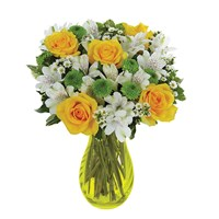 Lovely Lemon & Lime Roses for sale from Ingallina's Gifts