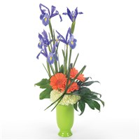 Iris medley flower bouquet for sale
