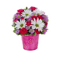 """It's a daisy day"" bouquet of flowers for sale"