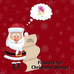 Flowers_for_Christmas_Dinner